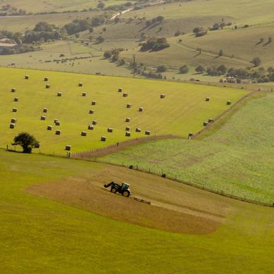 Farming The South Downs