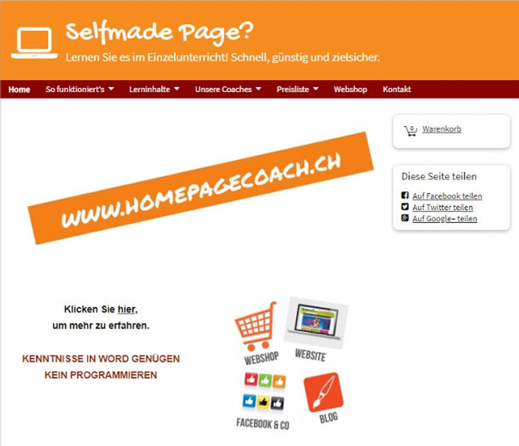 Brandy; Homepage Coach; Website