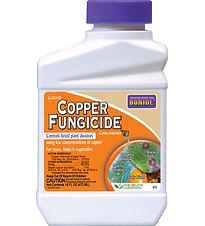copperfungicide.jpg