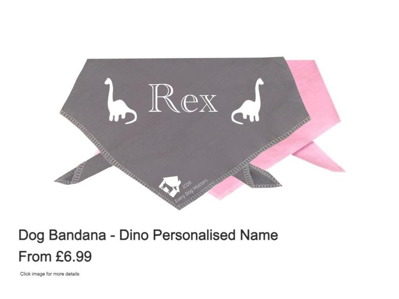 Dog Bandana - Dino Personalised Name