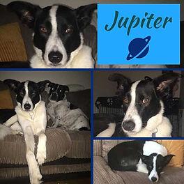 jupiter5.jpg