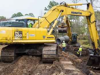 Carolina Bay Progress
