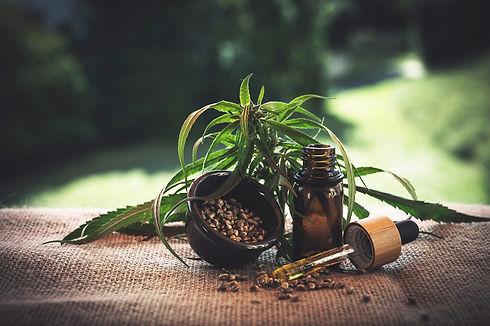 plant medecine.jpg