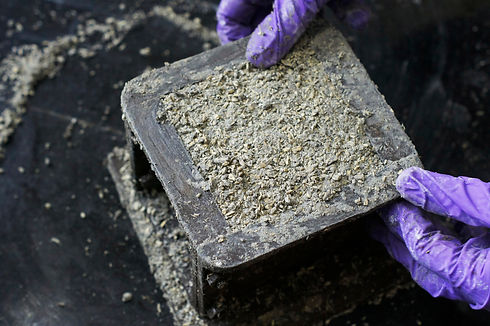 Picture of fresh mix of hempcrete (hemp
