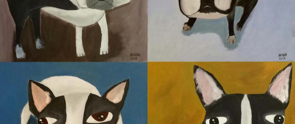 French Bulldog Series_web.jpg