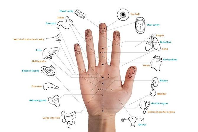 acupuntura-mano-puntos.jpg