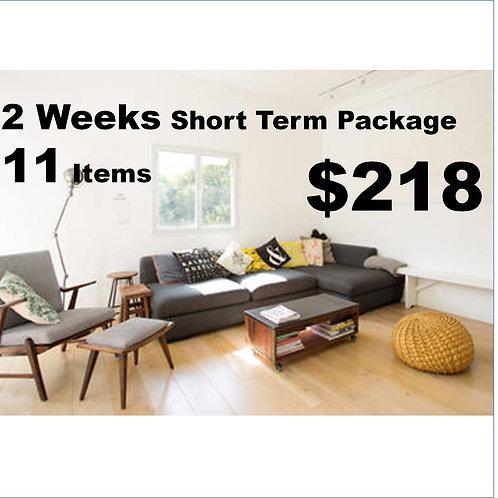 Short Term Package (2 weeks)