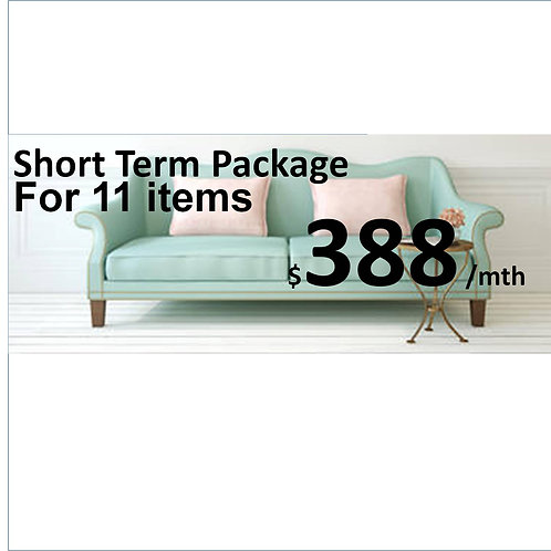 Short Term Package (1 month)