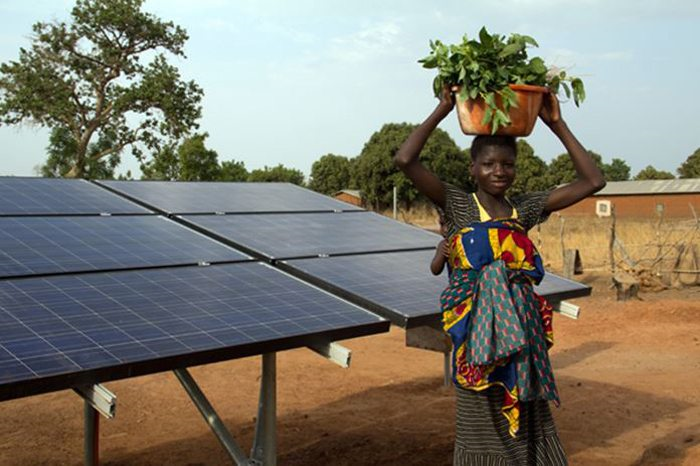 solar panel with teenager holding a basket of green leaves inside