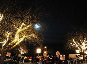 Victorian evening EDP.jpg