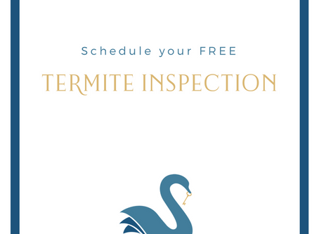 your HOME   Termite Inspection