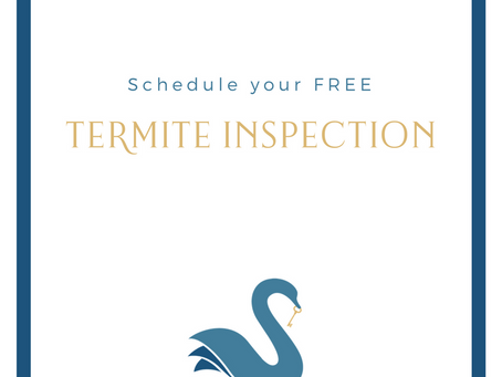 your HOME | Termite Inspection