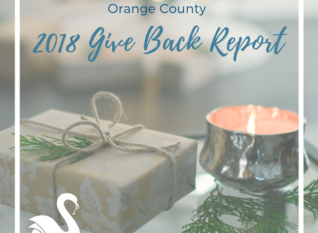 2018 Give Back Report | Big News!