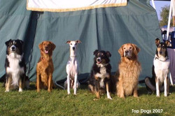 Top Dogs 2007
