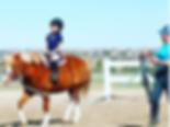 English Riding Lessons