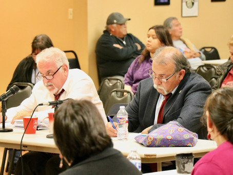 Council approves more impeachment remedies for chief; allots CARES Act funds