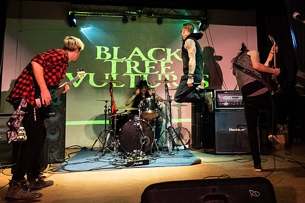 Black Tree Vultures