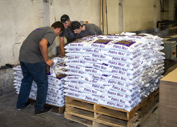 Purple Heat loaded on pallet