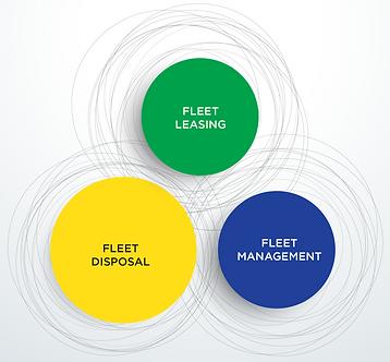 Fleet disposal, leasing, and management