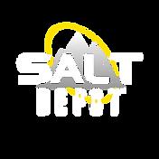 Salt Depot Logo