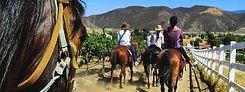 Horse-Riding-Wine-Tasting-Temecula-Intre