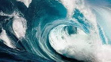 Catch the wave of disruption in Learning