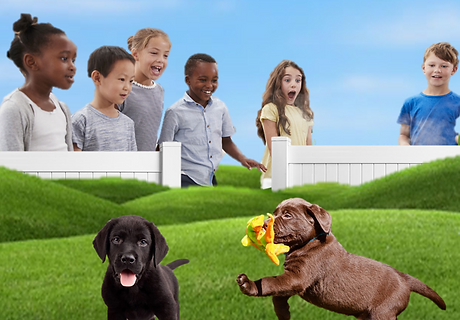 children with Puppies3.png