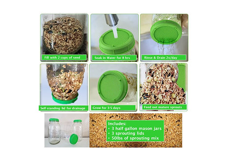 Sprouting Kit (Jars, Strainer lids , 50lbs Sprouting mix)