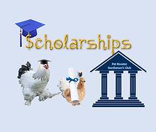 Scholarship%20fund_edited.jpg