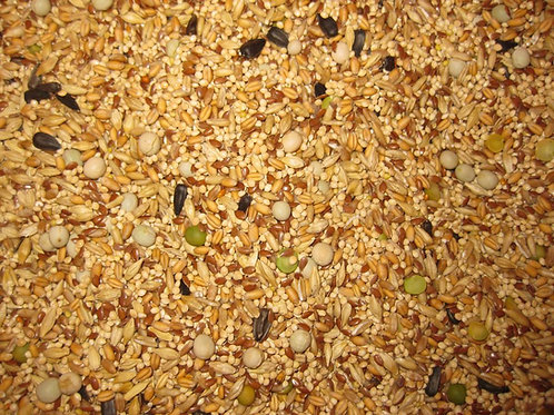50 lbs. Seeds & Grains  ( Ferment , Sprout , Fodder)
