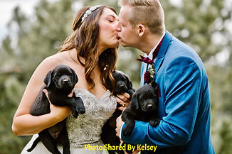 Kelsey Wedding Event