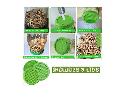 Sprouting Strainer Lids for Wide Mouth Jars