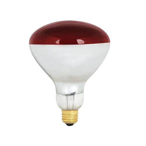 Heatlamp bulb 2-pack