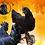 Thumbnail: Ayam Cemani