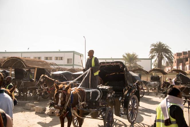 Egyptian's Taxi