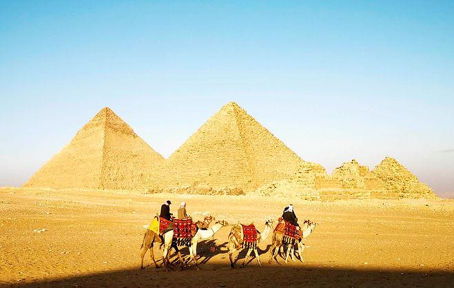 giza camel2.jpg