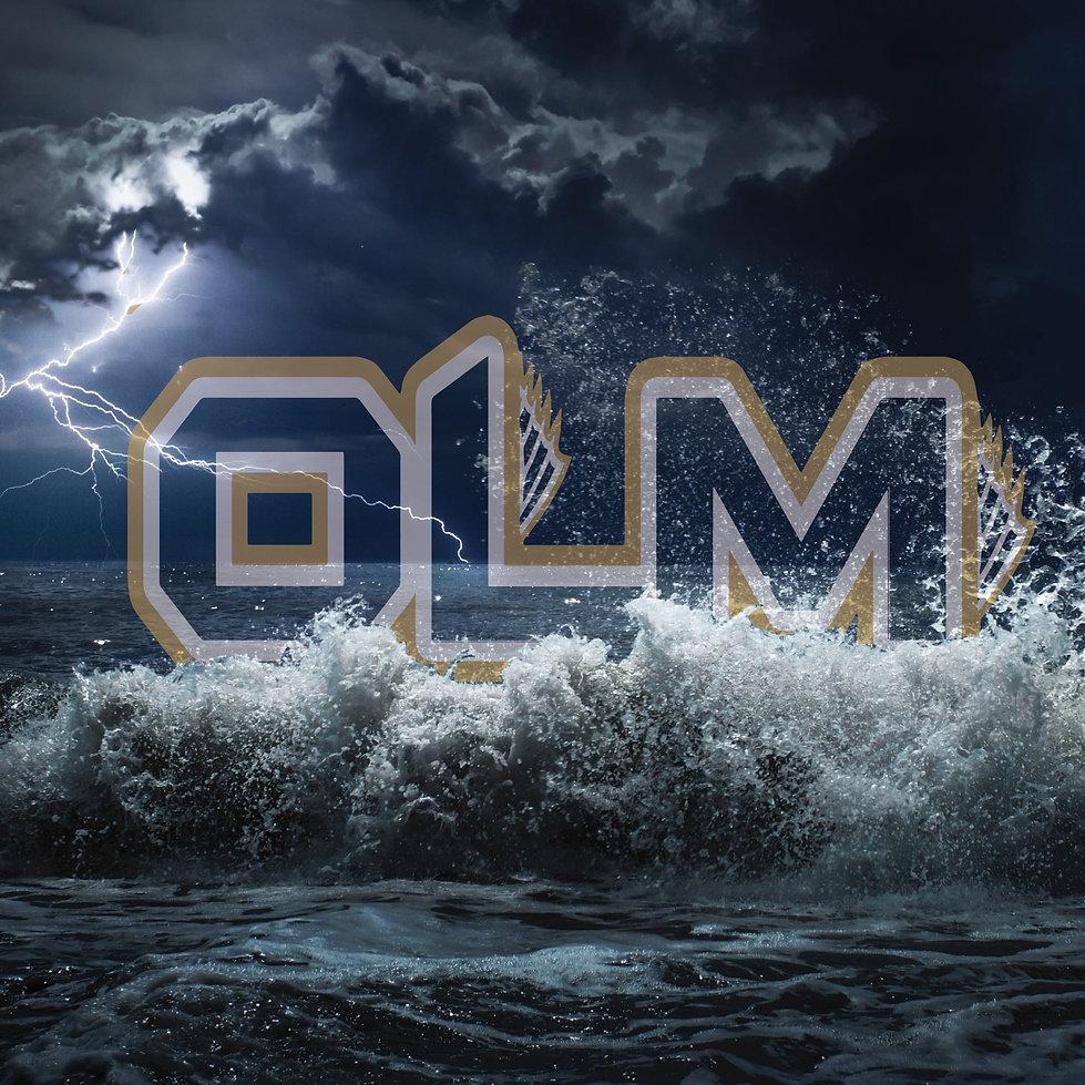 logo in waves-01.jpg
