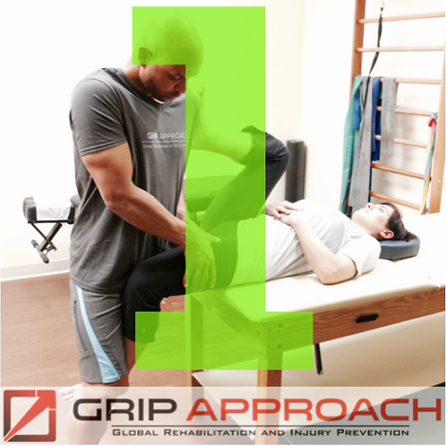 GRIP Clinical Sagittal Plane DENVER May 20-21