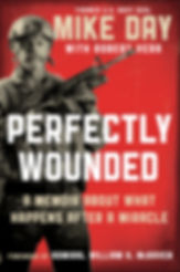 Perfectly_Wounded_Book_Cover.jpg