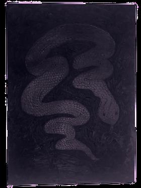 Sneaky Sparkly Snake Silhouette