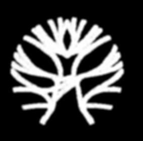 Logo_Blanc__l__Fond_Transparent_modifié.