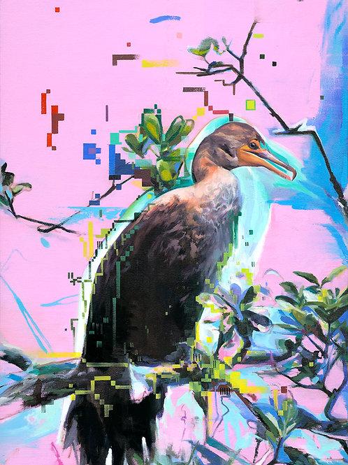 Cormorant I
