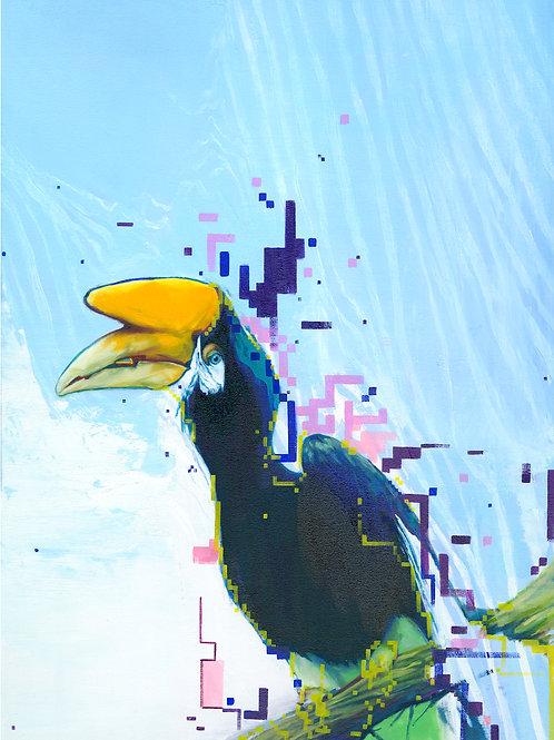 Hornbill I