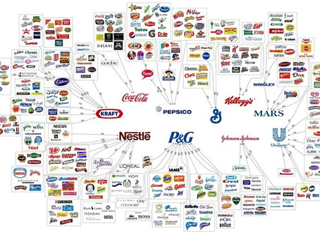 What Is One of the Most Important Lessons to be Learned from Fast Moving Consumer Goods Giants?