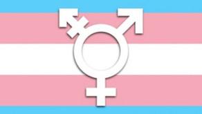 Dia nacional da visibilidade Trans (29 de janeiro)
