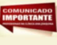 PROFISSIONAIS_DA_CLÍNICA_ANA_JOAQUINA.p