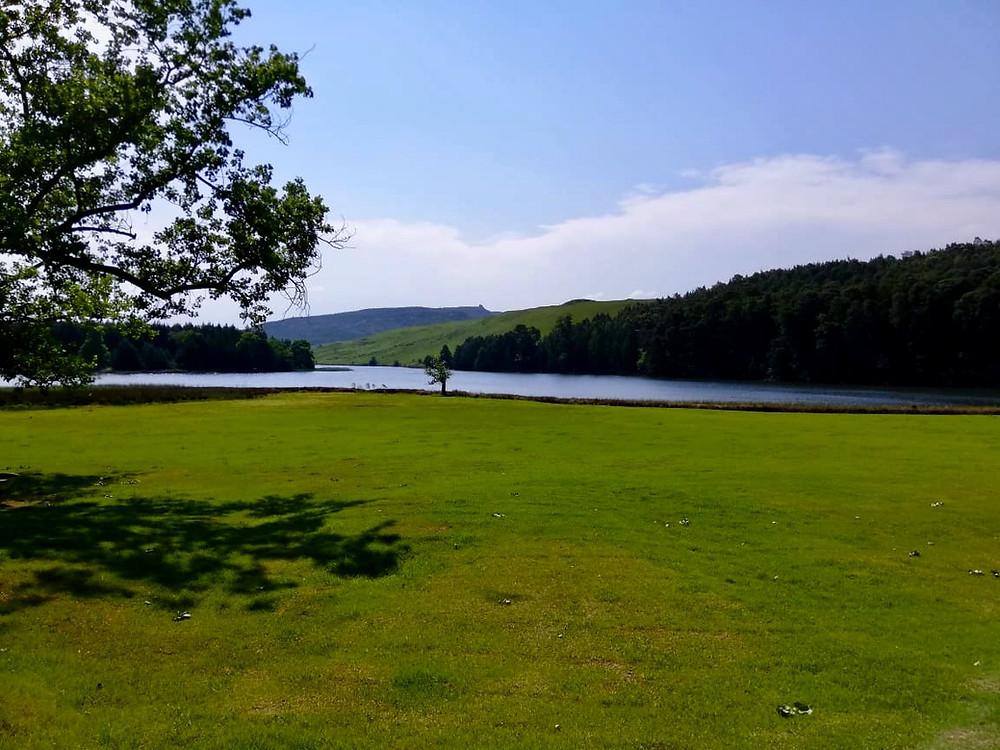 Lake, River, Green Lawns, Blue sky, forest, Midlands, Midlands Meander, Crystal Barn Country Estate