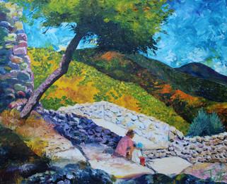 CHATEAU GRIMAUD TREE