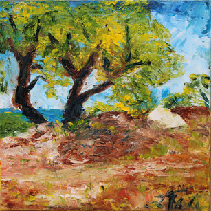 Provence Hill Trail (Two Cork Oaks)s