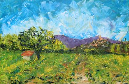 Provence Vineyard with Petite Cabane